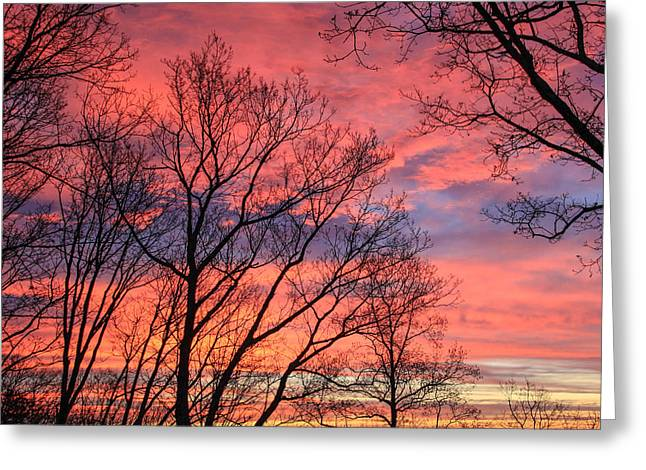 Sunrise Signal Mountain # 2 Greeting Card by Tom and Pat Cory