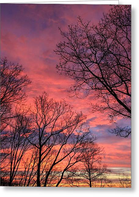 Sunrise Signal Mountain # 3 Greeting Card by Tom and Pat Cory