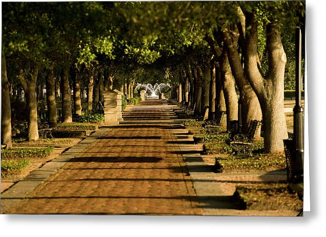 Lanscape Greeting Cards - Sunrise Stroll Greeting Card by Tom Rickborn