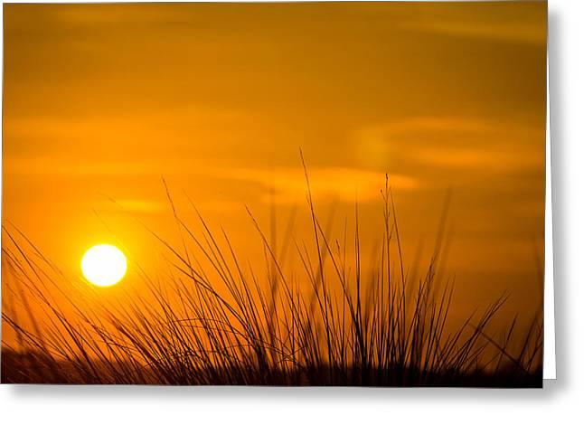 Dawn Greeting Cards - Sunrise Through Frederica Marsh Reeds Greeting Card by Chris Bordeleau