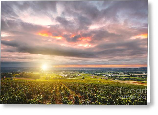 Beaujolais Greeting Cards - Sunrise with sunflare over vineyards of Beaujolais land Greeting Card by Gael Fontaine