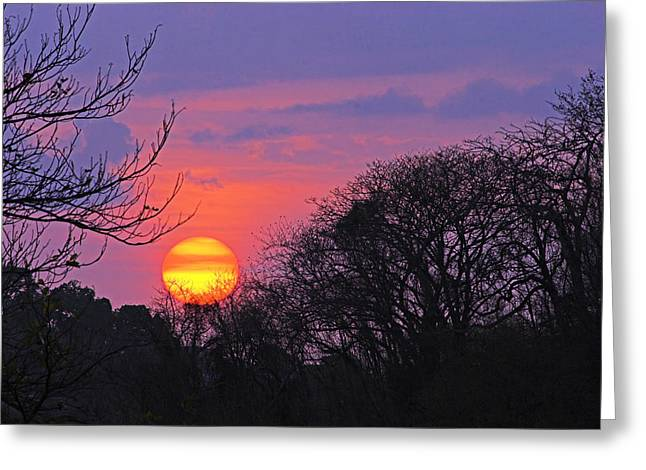 Colorful Sunset Greeting Cards Greeting Cards - Sunset 1-St Lucia Greeting Card by Chester Williams