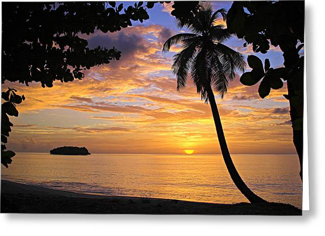 Colorful Sunset Greeting Cards Greeting Cards - Sunset 3-St Lucia Greeting Card by Chester Williams