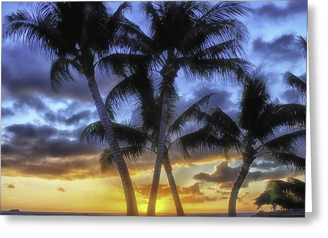 Ala Moana Greeting Cards - Sunset at Ala Moana Beach Park Greeting Card by Jennifer Crites