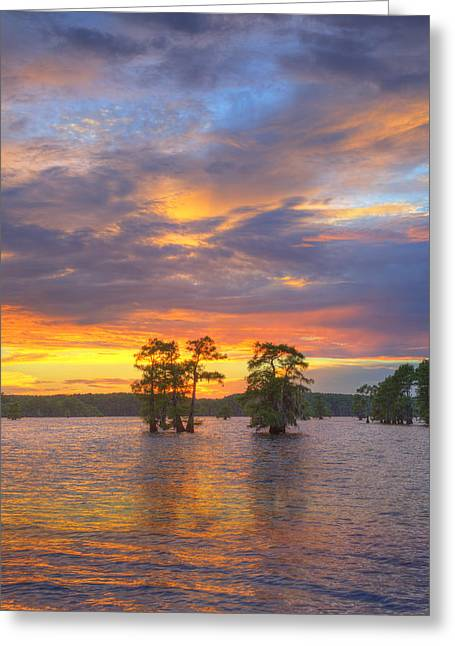 Caddo Lake Greeting Cards - Sunset at Caddo Lake in East Texas 2 Greeting Card by Rob Greebon