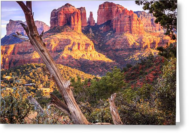 Cathedral Rock Greeting Cards - Sunset at Cathedral Rock Greeting Card by Alexey Stiop
