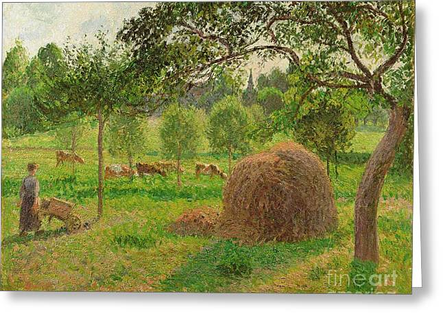 Cattle Farming Greeting Cards - Sunset at Eragny Greeting Card by Camille Pissarro