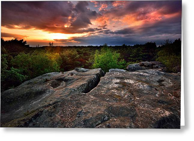 Fontainebleau Forest Greeting Cards - Sunset at Fontainebleau Greeting Card by Olivier Blaise