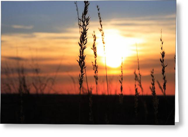 Sunset At Monument Hill Greeting Card by Toni Hopper