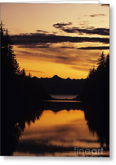 Beautiful Creek Greeting Cards - Sunset at Peterson Creek Greeting Card by John Hyde - Printscapes