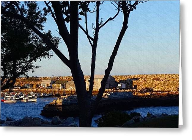 Boats In Harbor Greeting Cards - Sunset At Pigeon Cove Greeting Card by Harriet Harding