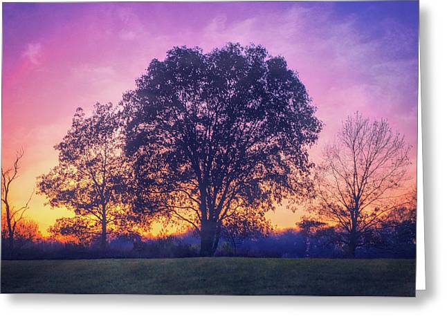Sunset At Retzer Nature Center Greeting Card by Jennifer Rondinelli Reilly - Fine Art Photography