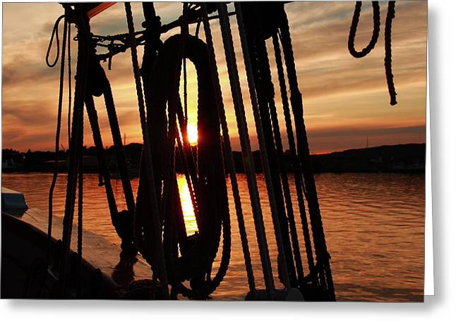 Schooner Greeting Cards - Sunset At Rockland Greeting Card by Doug Mills