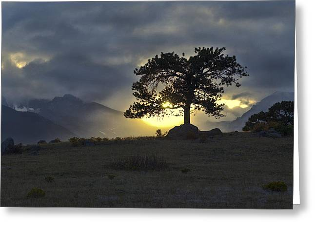 Sunset at Rocky Mountain Park Co Greeting Card by James Steele
