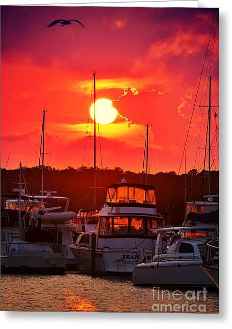 Masts Greeting Cards - Sunset at Southport Marina Greeting Card by Kelly Nowak