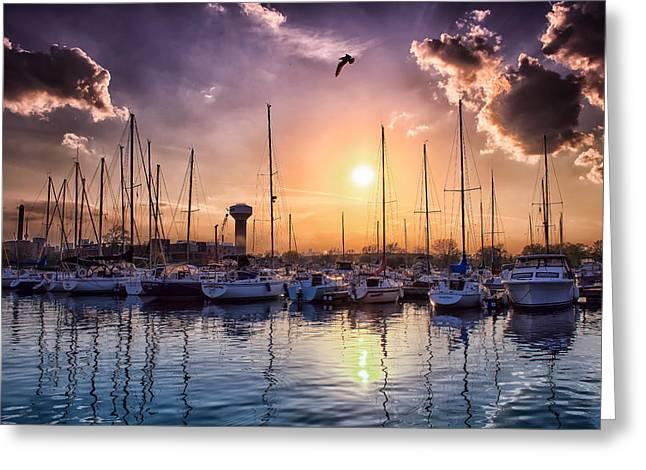 Docked Sailboats Greeting Cards - Sunset at the Marina Greeting Card by Jeff Hurst