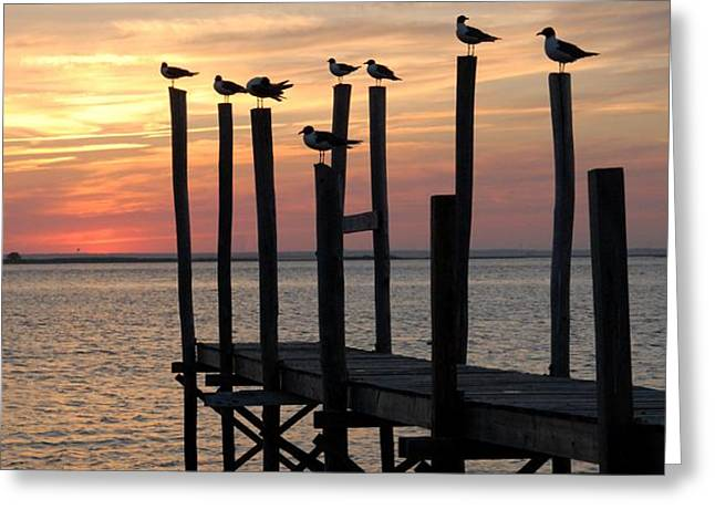 Sunset Bay 27 Greeting Card by Joyce StJames