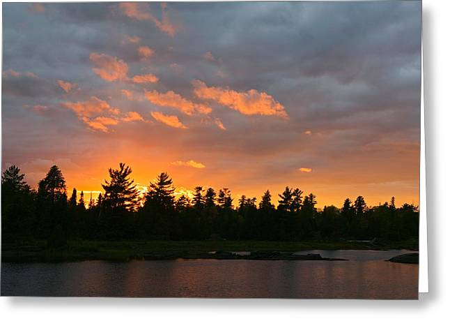 Sunset Behind Silhouetted Forest, Lake Greeting Card by Panoramic Images