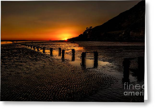 Estuary Greeting Cards - Sunset By The Beach Greeting Card by Adrian Evans