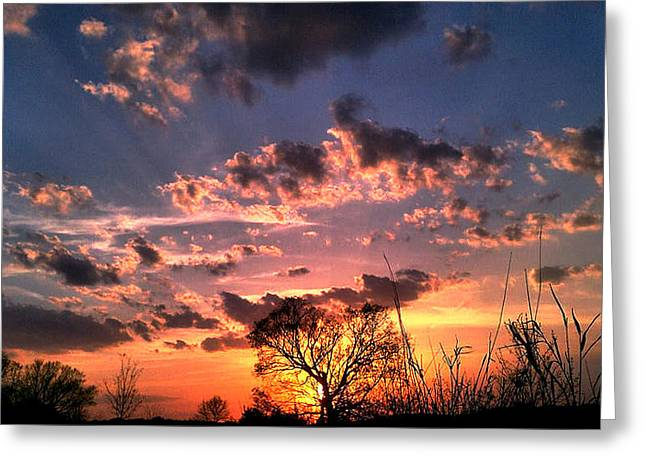 Hdr Landscape Pyrography Greeting Cards - Sunset By Tracy M Greeting Card by Eric Wait