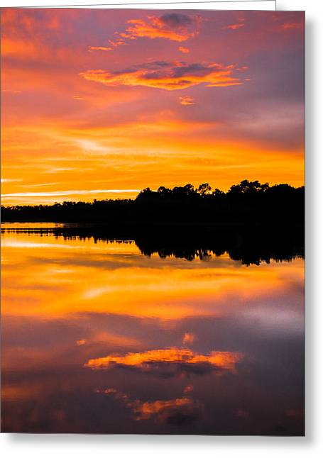 Gainesville Greeting Cards - Sunset Colors Greeting Card by Parker Cunningham
