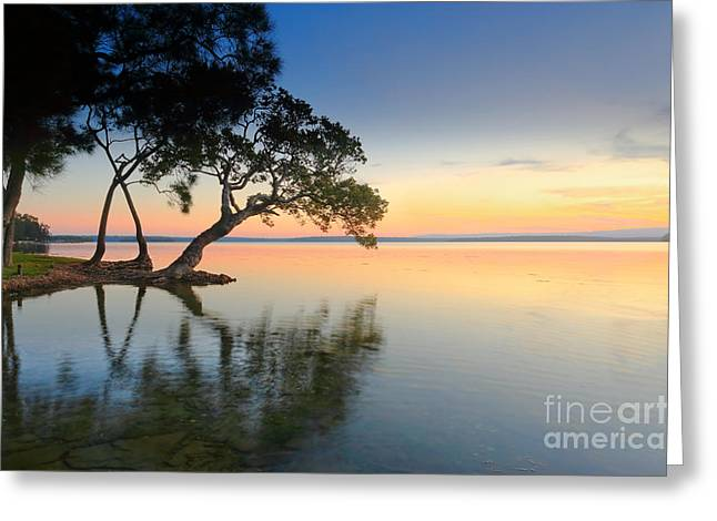 Amazing Sunset Greeting Cards - Sunset Dreaming Greeting Card by Leah-Anne Thompson