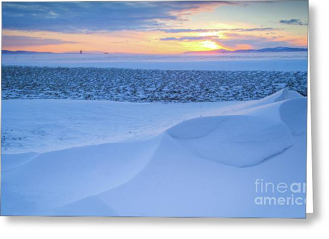 Drifting Snow Greeting Cards - Sunset Drift Greeting Card by Idaho Scenic Images Linda Lantzy