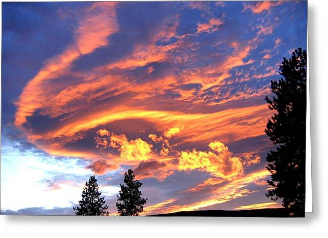 Sunset Extravaganza Greeting Card by Will Borden