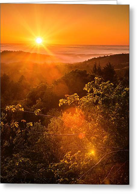 Foggy Beach Greeting Cards - Sunset Fog over the Pacific #2 Greeting Card by Bryant Coffey