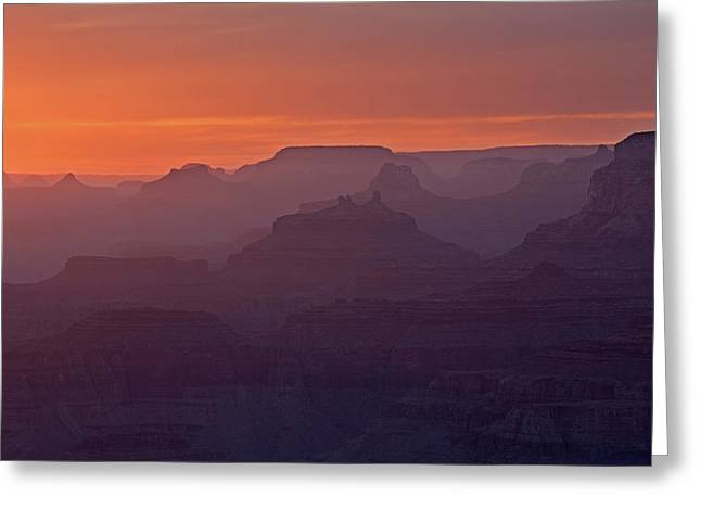 Sunset Grand Canyon Greeting Card by Dean Pennala