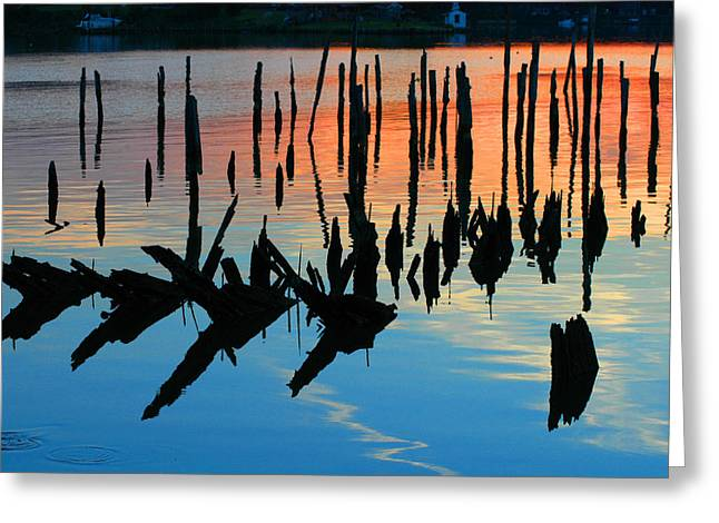 Clayton Greeting Cards - Sunset in Colonial Beach Virginia Greeting Card by Clayton Bruster