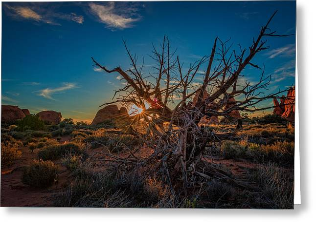 Skyline Arch Greeting Cards - Sunset in The Devils Garden Greeting Card by Rick Berk