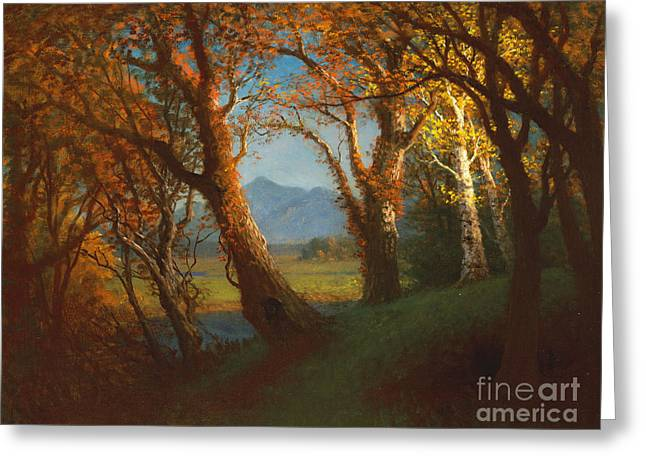 Sunset in the Nebraska Territory Greeting Card by Albert Bierstadt