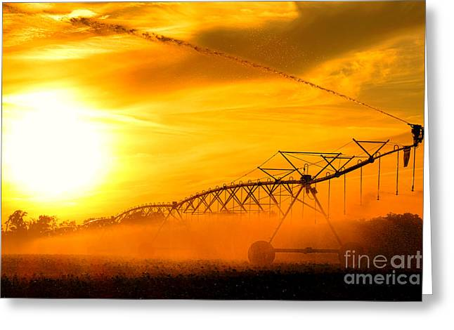 Center Field Greeting Cards - Sunset Irrigation Greeting Card by Olivier Le Queinec