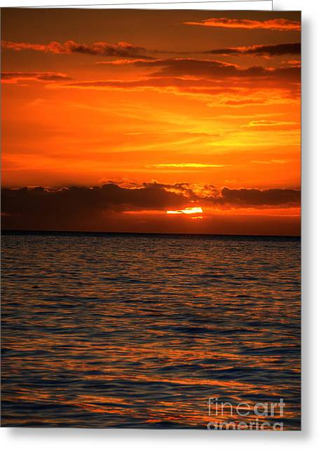 Sunset Kiss Greeting Card by Kelly Wade