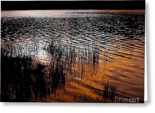 Sunset Lake Greeting Card by Kaye Menner