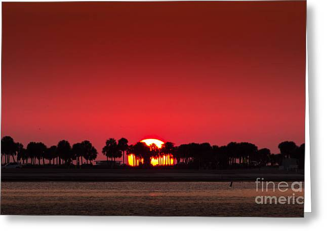Gulf Of Mexico Scenes Greeting Cards - Sunset Greeting Card by Marvin Spates