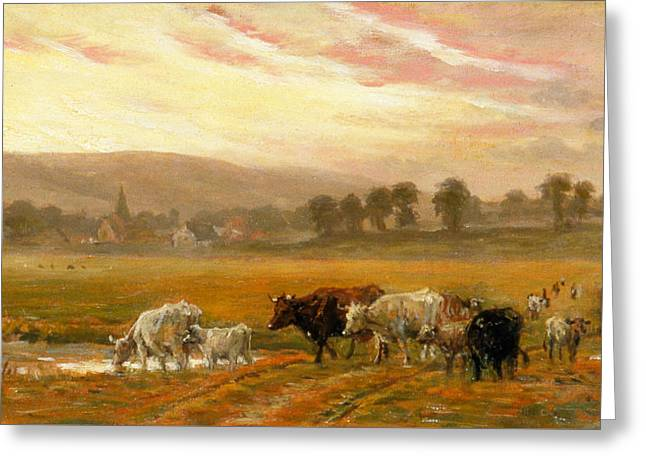 Sunset Near Amberley Greeting Card by Alfred Fitzwalter Grace