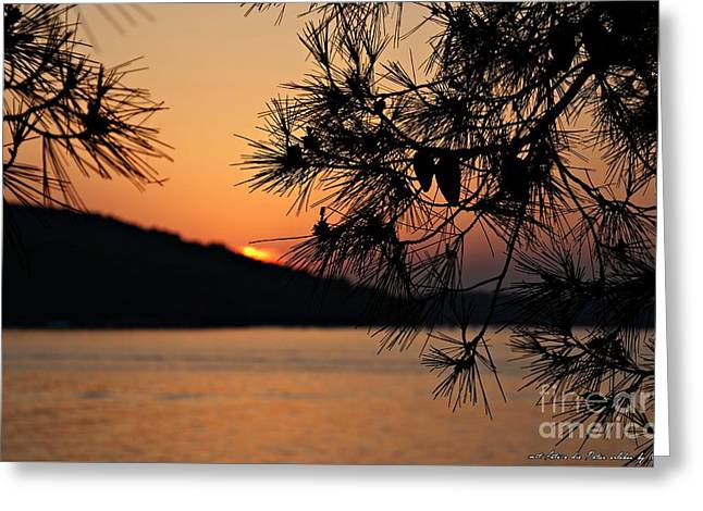 Sunset Greeting Card by Olivia Narius