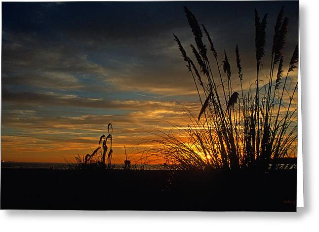 California Ocean Photography Greeting Cards - Sunset on Coronado Greeting Card by Kathy Yates