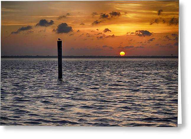 Sunset Posters Greeting Cards - Sunset on Laguna Madre Bay Greeting Card by Kristina Deane