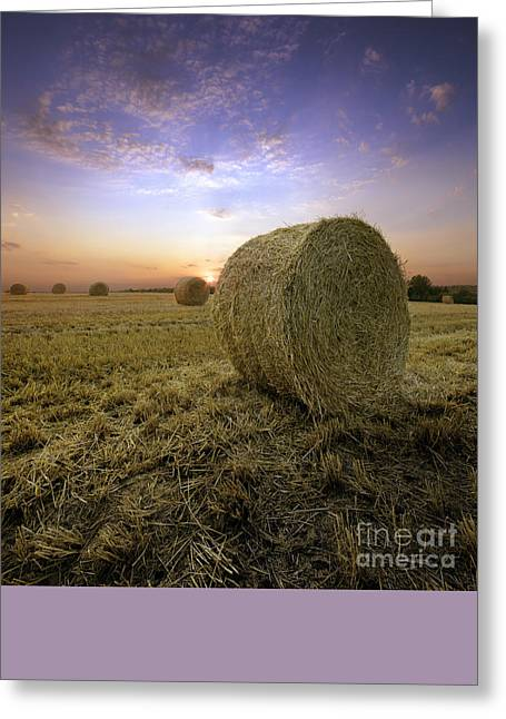 Hay Bales Greeting Cards - Sunset On The Field With Straw Bales Greeting Card by Taras Lesiv
