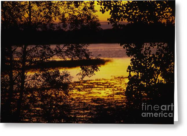 Lilly Pad Greeting Cards - Sunset on the Lake Greeting Card by Lowell Anderson