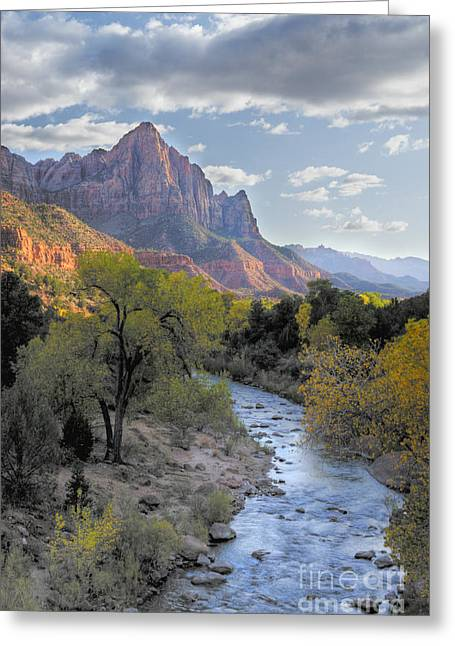 Out West Greeting Cards - Sunset on The Watchman Greeting Card by Sandra Bronstein