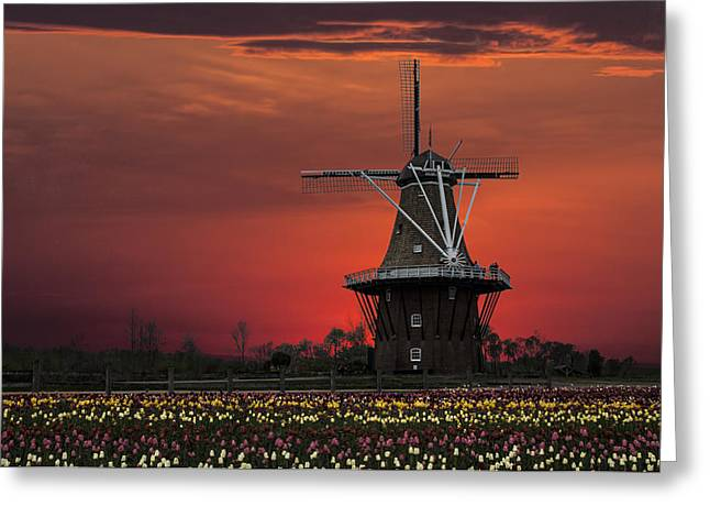 Randy Greeting Cards - Sunset on Windmill Island Greeting Card by Randall Nyhof