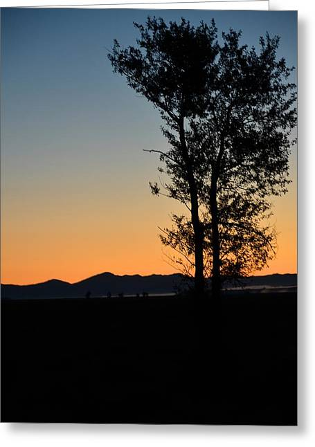 Tangerine Greeting Cards - Sunset over Beaver Meadow Greeting Card by Lenore Holt-Darcy