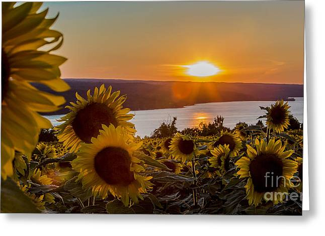 Ithaca Greeting Cards - Sunset over Cayuga Lake Greeting Card by Brad Marzolf Photography