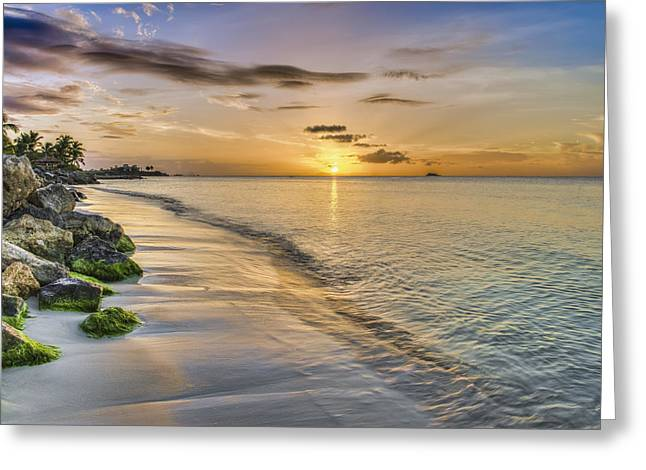 Dickenson Greeting Cards - Sunset Over Dickenson Bay  St. John S Greeting Card by F. M. Kearney