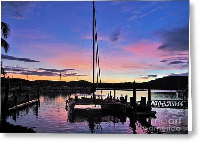 Masts Greeting Cards - Sunset Over Hamilton Harbour Greeting Card by Jackie Tweddle