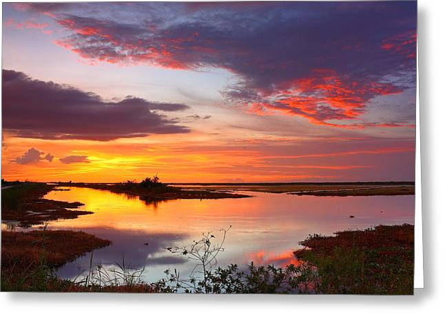 Wildlife Refuge. Greeting Cards - Sunset Over Hillsboro Canal 1 Greeting Card by Robert Grauer